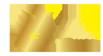 logo yến sao HoGi